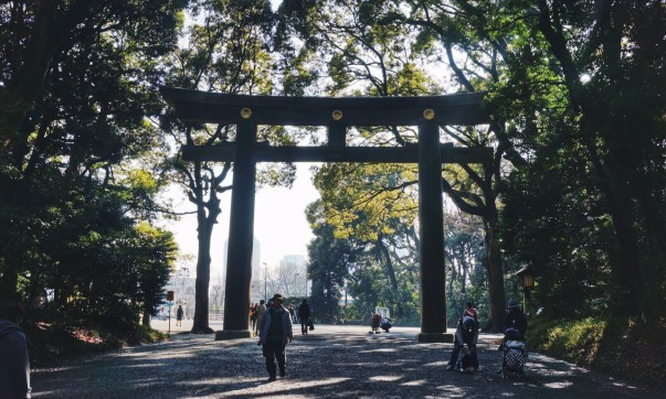 Torii gate Meiji-jingu shrine